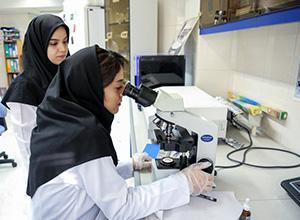 Best IVF Clinics in Iran